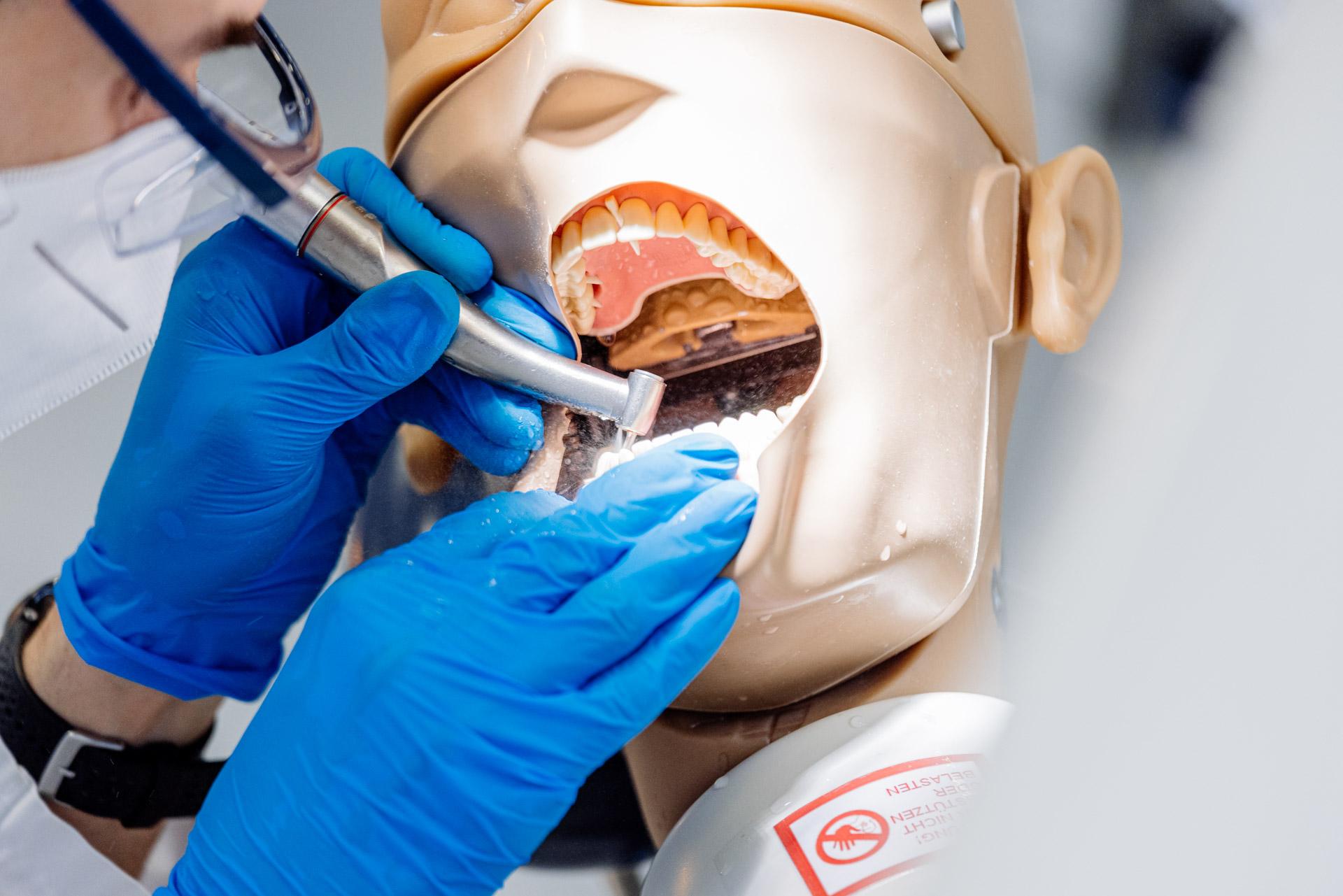 dentist working on dummy